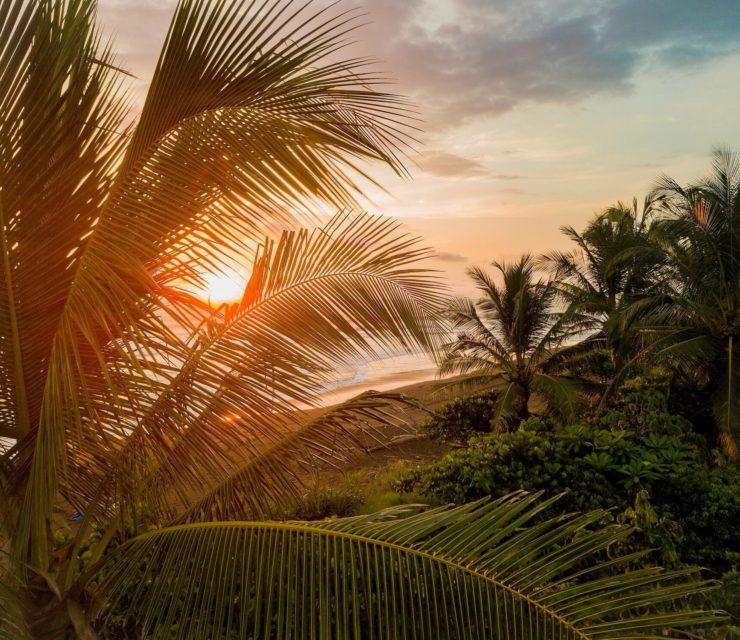 Pura Vida! – avagy a hosszú élet Costa Ricán