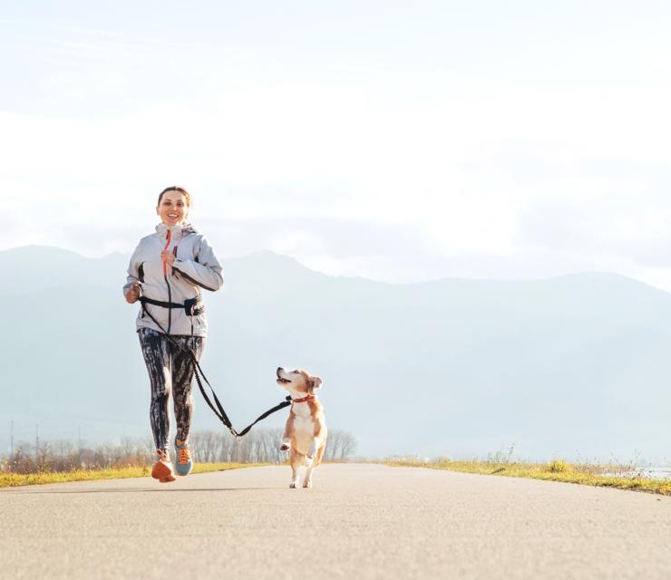 Tippek, hogyan fuss kutyával